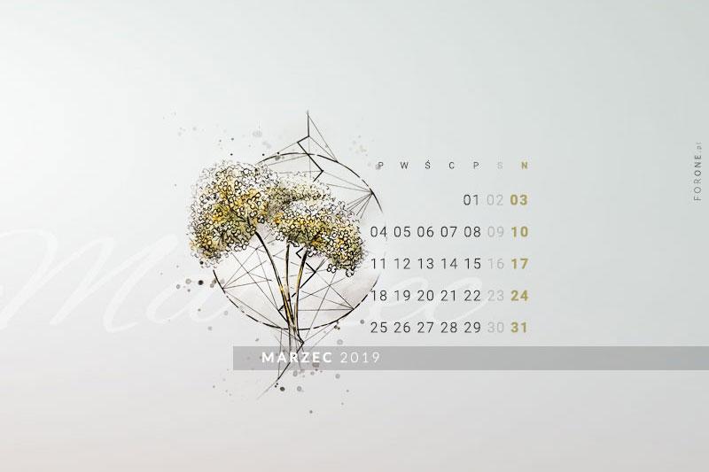 Kalendarz marzec 2019. Grafika z hortensjami i kształtami geometrycznymi. Tapeta botaniczna z hortensjami marzec 2019