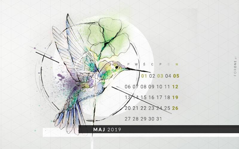 Tapeta z kolibrem maj 2019
