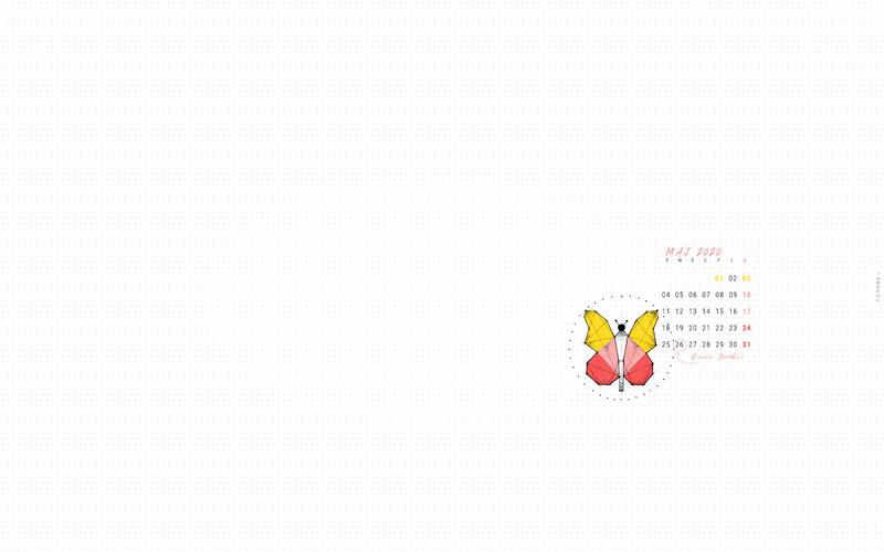 Kolorowa tapeta na maj 2020 Podgląd całej tapety z rysunkiem motyla