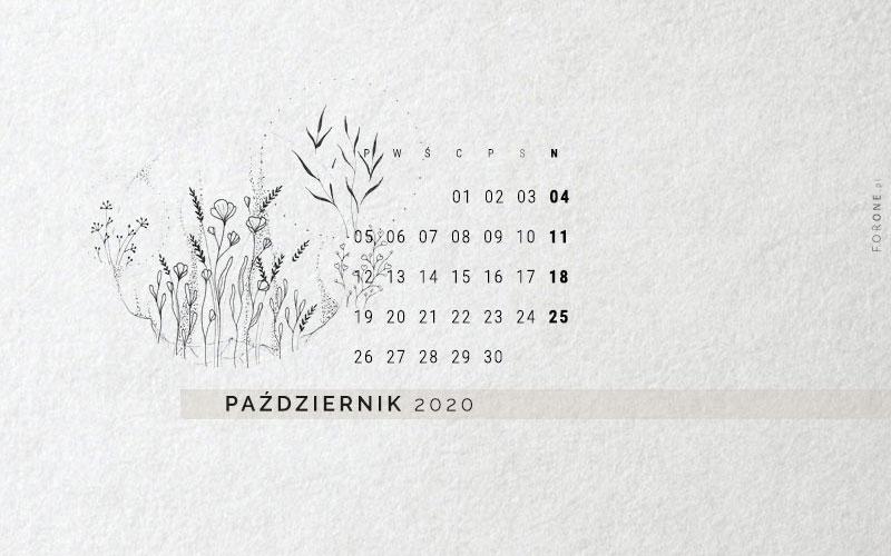 Minimalistyczna tapeta na październik 2020, podgląd rysunku, kwiaty w wersji czarnobiałej, zamknięte w koła